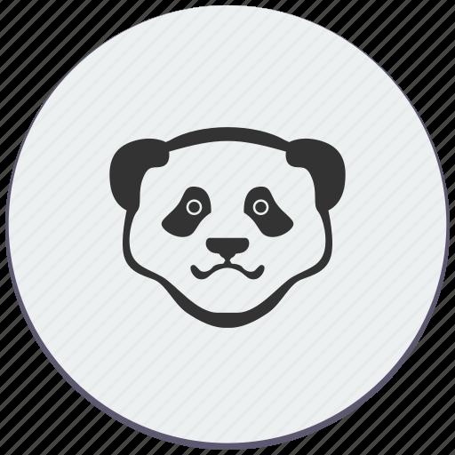 animal, bear, face, panda, think, zoo icon