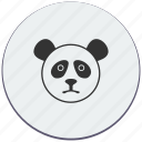 avatar, face, head, lazy, panda icon