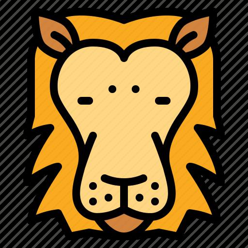 animals, lion, mammal, zoo icon