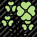 celtic, clover, flora, lucky, tradition icon