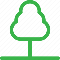 cash, forest, grow, nature, plant, thin, tree icon