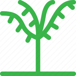 forest, grow, nature, palm, plant, thin, tree icon