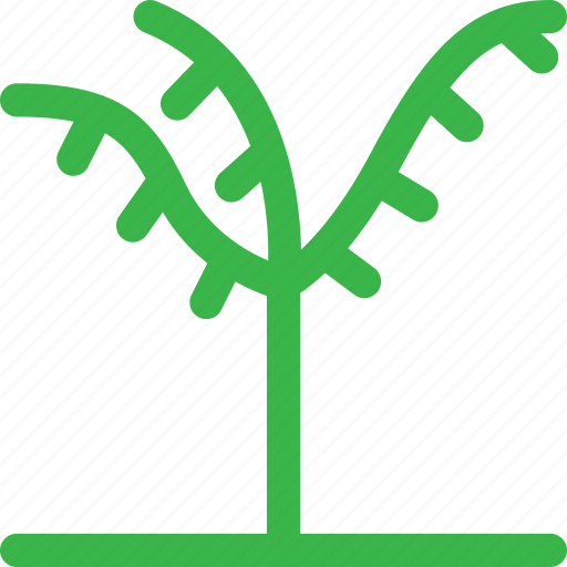 forest, grow, nature, plant, thin, tree icon