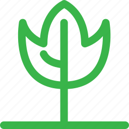 fire, forest, green, grow, nature, plant, tree icon