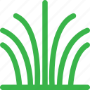 forest, grass, green, grow, nature, plant, tree icon