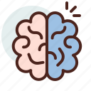 brain, education, learn, memory icon