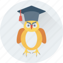 bird, graduate, graduation, owl, owl sage icon