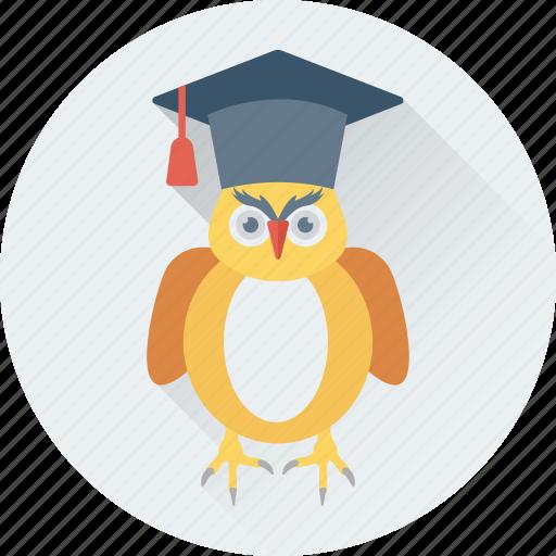 bird, graduate, graduation, owl, owl sage icon
