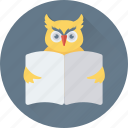 bird, learning, owl, owl sage, study icon
