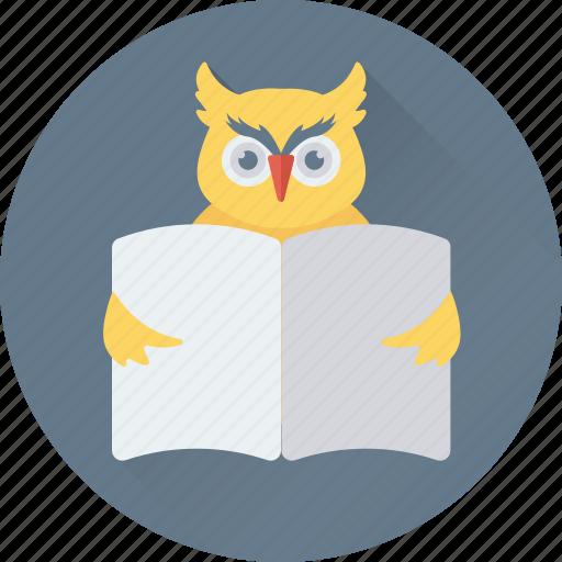 bird, learning, owl, owl sage, study icon