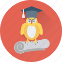 degree, graduate owl, graduation, owl degree, owl sage icon