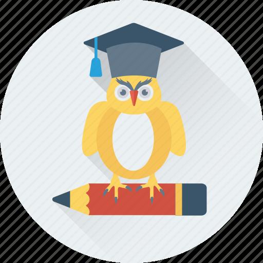 graduate owl, graduation, owl, owl sage, pencil icon