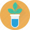 botany, botany experiment, flask, lab experiment, plant icon