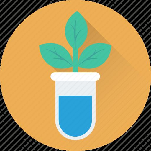 botany, botany experiment, flask, lab experiment, plant icon