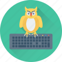 keyboard, learning, owl, owl sage, study icon