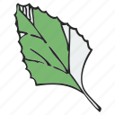 foliage, frondage, leaf, leafage, tree icon