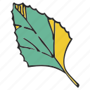 foliage, frondage, leaf, leafage, leaves, tree icon