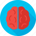brain, health, knowledge, medicine, school, science, wisdom icon