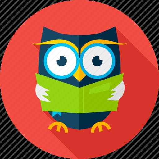 book, knowledge, learn, owl, owlet, read, wisdom icon