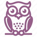 education, owl, wisdom icon