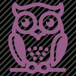 education, owl, wisdom icon