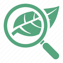 biology, ecology, education, environment, leaf, research, school, study icon