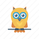 bird, education, owl, professor icon