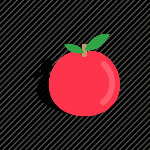 apple, food, fresh, fruit, healthy, isometric, nature icon