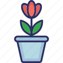 leafage, plant, plant pot, sapling icon