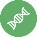 cell, dna, dna helix, dna molecules icon