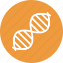 biology, dna, dna chain, dna helix icon