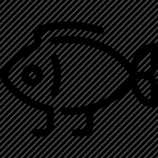 darwin, evolution, fish, science icon