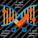 modification, dna, genetic, gmo