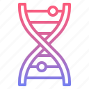 biology, dna, genetic, science icon