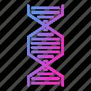 biology, dna, genetics, molecule, science