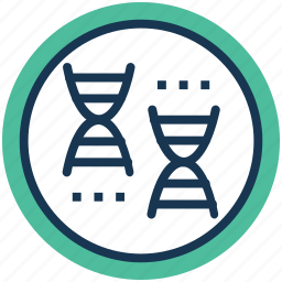 chromosome, dna, genetic engineering, genetic modification, genetic research icon