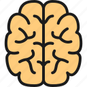 brain, chemistry, education, intelligence, mind, research, science icon