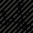 structure, organization, connection, molecular