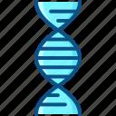 dna, genetics, genome, molecule, science icon icon
