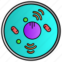 amoeba, bacteria, cell, germs, science, virus icon