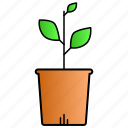 growth, leaf, leaves, nature, science icon