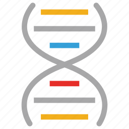 dna, dna chian, helix, medical icon