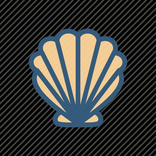 beach, ocean, seashell, shell icon
