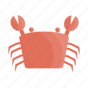 animal, animals, crab, cute, cutie, fish, sea