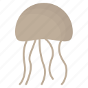 animal, cute, cutie, fish, jelly, jellyfish, sea icon