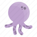 animal, animals, cute, cutie, fish, octopus, sea icon