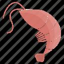 animal, animals, cute, cutie, food, sea, shrimp icon