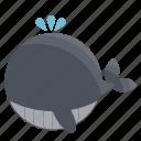 animal, animals, cute, cutie, fish, sea, whale icon