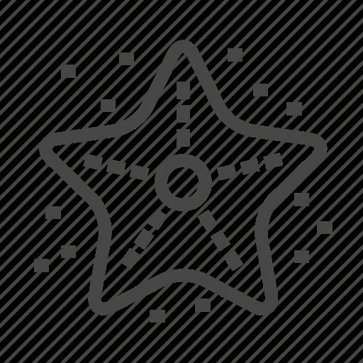 animal, beach, starfish icon