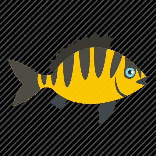 animal, fin, fish, fishing, perch, river, white icon